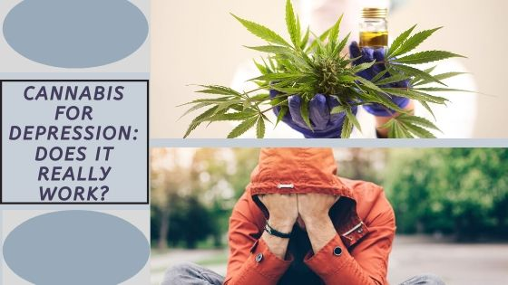 Cannabis for Depression: Does it Really Work