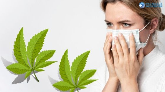 Cannabis and COVID-19
