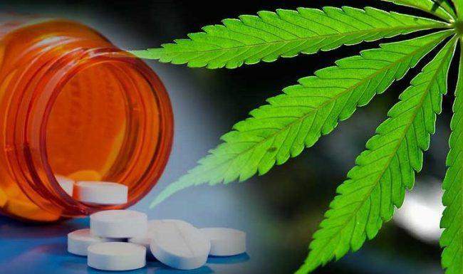 Medical Marijuana Vs Prescription Medications