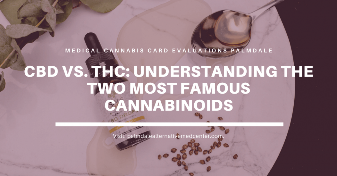 CBD vs THC Understanding the Two Most Famous Cannabinoids