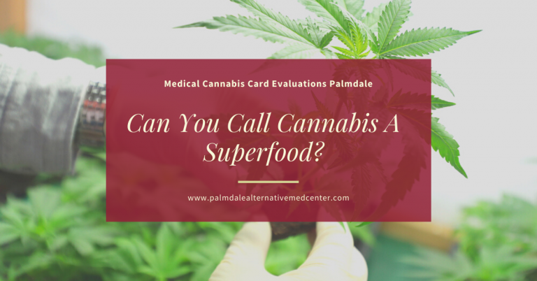 Can You Call Cannabis A Superfood_